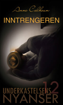 Inntrengeren - ebook